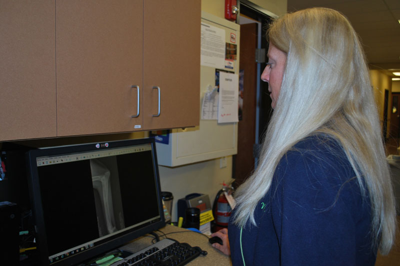 Dr. Katherine Wells reviews a patient's radiographs